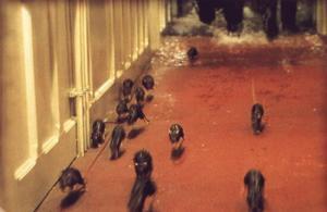 titantic rats