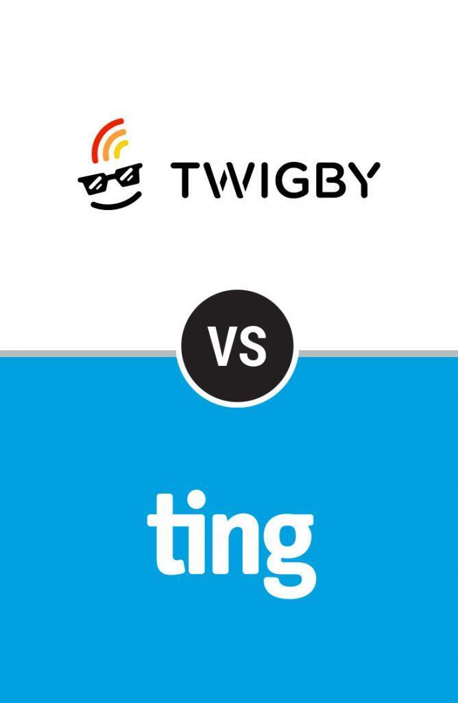 twigby vs ting